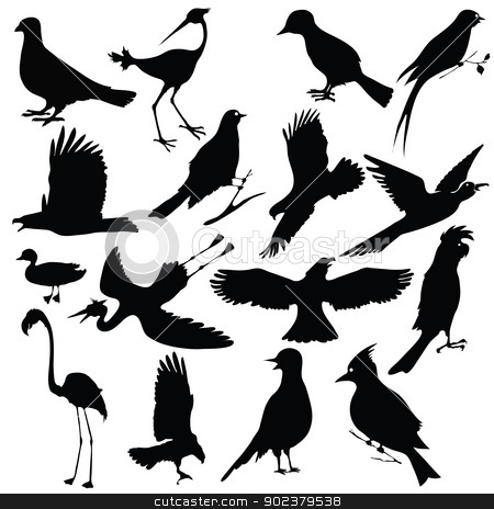 birds stock vector clipart, black silhouettes of birds for your design by valeo5