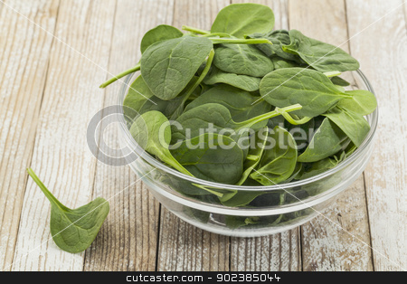 bowl of baby spinach stock photo, glass bowl of fresh baby spinach on a grunge white painted wood background by Marek Uliasz