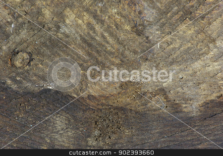 wood background  stock photo,  brown wood background with a natural patterns by Vitaliy Pakhnyushchyy