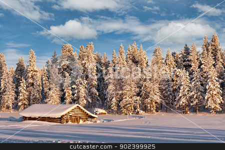 dug in the winter frosty forest stock photo, dug in the winter frosty forest with trees covered with snow in the setting sun by Ruslan Kudrin