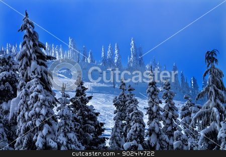 Sking Chairlifts Snowy Trees at Snoqualme Pass Washington stock photo, Sking Chairlifts Snowy Trees on Snow Mountain at Snoqualme Pass Washington. by William Perry