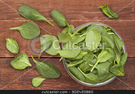 bowl of baby spinach stock photo, baby spinach leaves spilling from a glass bowl onto red barn wood table by Marek Uliasz