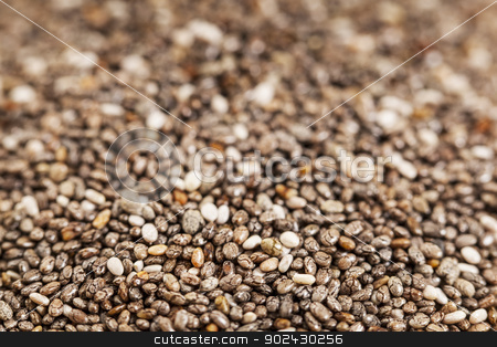 chia seeds close-up stock photo, chia seeds close-up with a shallow depth of field by Marek Uliasz