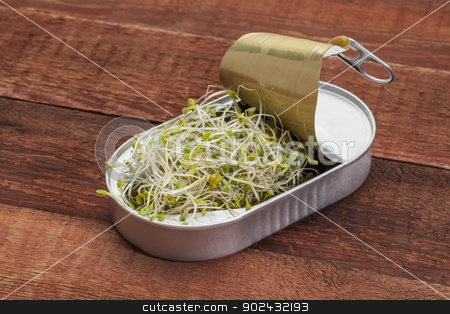broccoli sprouts in can stock photo, opening tin can with broccoli, radish and clover sprouts growing inside,  red rustic barn wood  table - healthy food concept by Marek Uliasz