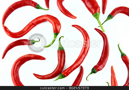 red hot chili  stock photo, red hot chili pepper on a white background  by Designsstock