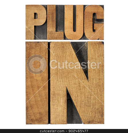 plugin (plug-in) in wood type stock photo, plugin (plug-in)  - computer software component or application - isolated text in vintage letterpress wood type printing blocks by Marek Uliasz