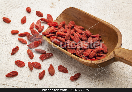 Tibetan goji berry scoop stock photo, Tibetan goji berries (wolfberry) spilling of the wooden scoop on a rough white painted wood surface by Marek Uliasz