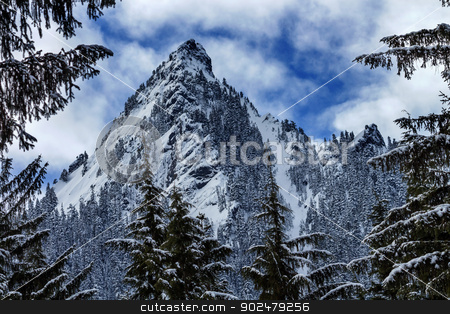 McClellan Butte Snow Mountain Peak Through Trees Snoqualme Pass  stock photo, McClellan Buttte Snow Mountain Peak Through Trees Snoqualme Pass Washington by William Perry