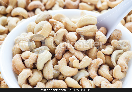 Salted Cashews in White Bowl with Spoon stock photo, A white bowl of roasted and salted cashews with a white spoon by Darryl Brooks