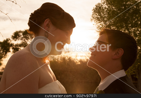 Gay Bride and Groom Outdoors stock photo, Same sex female bride and groom outdoors by sunset by Scott Griessel