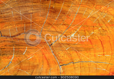 wood texture stock photo,  by Bunwit
