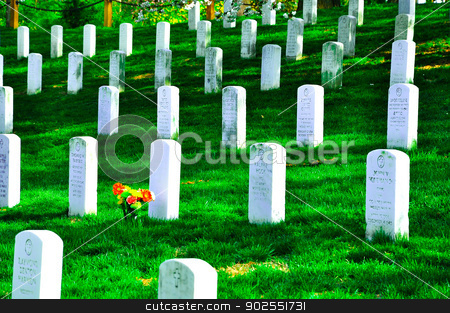 Arlington National Cemetery near Washington DC, in Spring stock photo,  by Hang Dinh