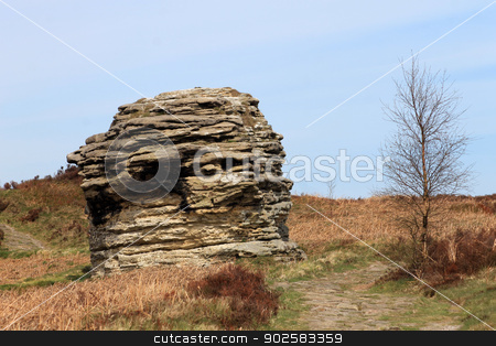 North Yorkshire moors stock photo, Rock formation in North Yorkshire Moors National Park, England. by Martin Crowdy