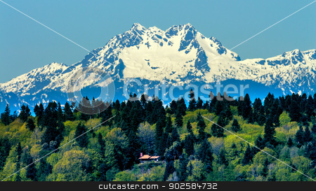 Bainbridge Island Mount Olympus Snow Mountain Olympic National P stock photo, Bainbridge Island Mount Olympus Snow Mountains Olympic National Park Washington State Pacific Northwest Closeup Evergreen by William Perry