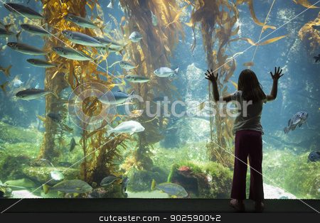 Young Girl Standing Up Against Large Aquarium Observation Glass stock photo, Amazed Young Girl Standing Up Against Large Aquarium Observation Glass. by Andy Dean