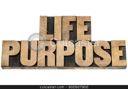 life purpose in wood type stock photo, life purpose - isolated text in letterpress wood type by Marek Uliasz