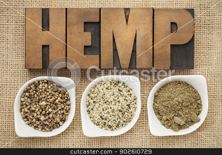 hemp seeds, hearts and prtotein stock photo, hemp products: seeds, hearts (shelled seeds) and protein powder in small ceramic bowls on burlap canvas with word hemp spelled in letterpress wood type by Marek Uliasz