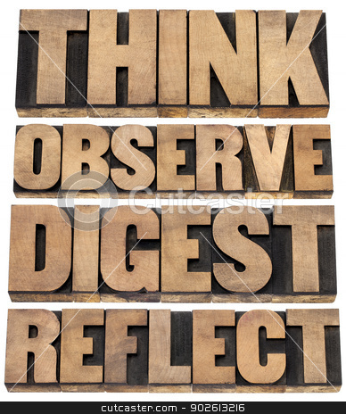 think, observe, digest, reflect stock photo, think, observe, digest, reflect - a set of motivational words  - isolated text in letterpress wood type by Marek Uliasz