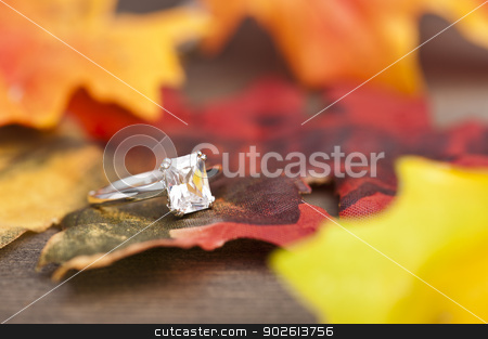 Diamond Engagement ring stock photo, Diamond Engagement ring in festive autumn decoration by Ulrich Schade