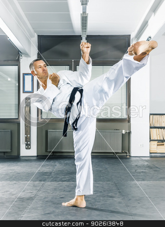 taekwondo stock photo, An image of a taekwondo martial arts master by Markus Gann