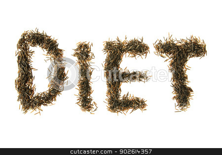Wild Rice Spelling Diet stock photo, Wild rice grains made to spell diet by Richard Nelson