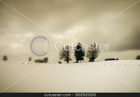winter scenery stock photo, An image of a nice sepia winter scenery by Markus Gann