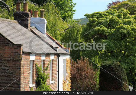 Ivy covered home or house stock photo, Ivy covered home or house in green countryside. by Martin Crowdy