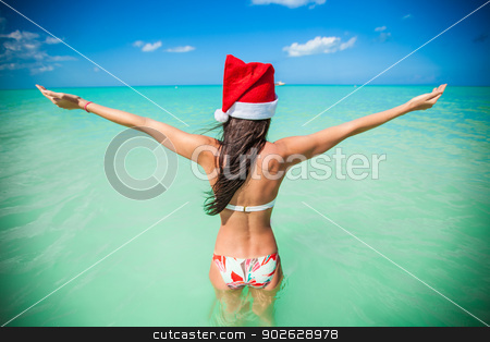 Back view of beautiful girl in santa hat walking like a bird stock photo, Back view of beautiful girl in santa hat walking like a bird by Dmitry Travnikov