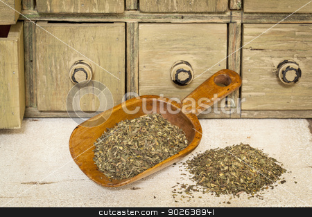 peppermint herbal tea stock photo, peppermint herbal tea - a pile and rustic wooden scoop with a primitive apothecary drawer cabinet in background by Marek Uliasz