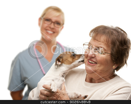 Happy Senior Woman with Dog and Veterinarian stock photo, Happy Senior Woman with Her Dog and Veterinarian Behind Isolated on a White Background. by Andy Dean