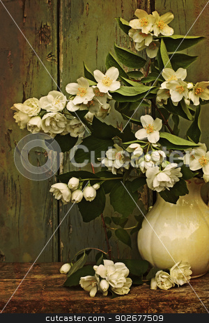 Jasmine flowers in a vase stock photo, Jasmine flowers in a vase vintage style by Juliet Photography