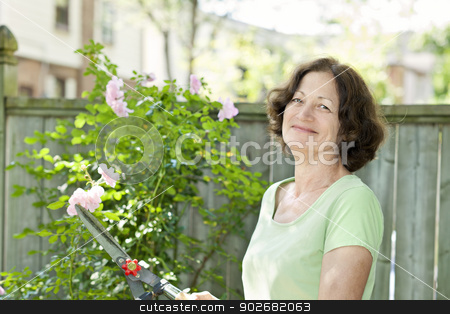 Senior woman pruning rose bush stock photo, Happy senior woman enjoying gardening and pruning rose bush with clippers by Elena Elisseeva