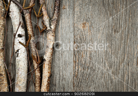 Birch branches background stock photo, Birch tree trunks and branches on natural wood background with copy space by Elena Elisseeva