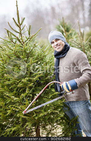 Man cutting Christmas tree stock photo, Man with saw choosing fresh Christmas trees at cut your own tree farm by Elena Elisseeva