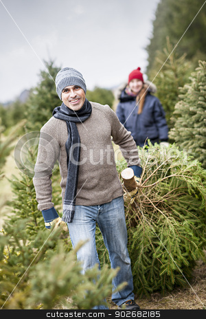 Family with Christmas tree on a farm stock photo, Man dragging fresh spruce at cut your own Christmas tree farm with his daughter in background by Elena Elisseeva