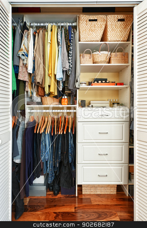 Organized closet stock photo, Clothes hung neatly in organized closet at home by Elena Elisseeva