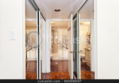 Mirrored closets and bathroom stock photo, Interior hallway with walk through mirrored closets to bathroom by Elena Elisseeva