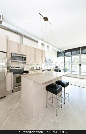 Modern condo kitchen and living room stock photo, Kitchen and living room of apartment - artwork from photographer portfolio by Elena Elisseeva