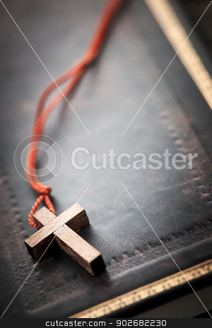 Christian Cross on Bible stock photo, Closeup of simple wooden Christian cross necklace on holy Bible with copy space by Elena Elisseeva