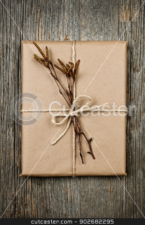 Plain gift with natural decorations stock photo, Simple gift package in brown paper decorated with birth branches on rustic wood background by Elena Elisseeva