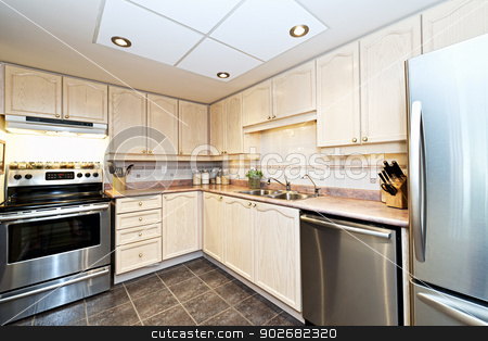 Modern kitchen with appliances stock photo, Modern luxury kitchen with stainless steel appliances by Elena Elisseeva