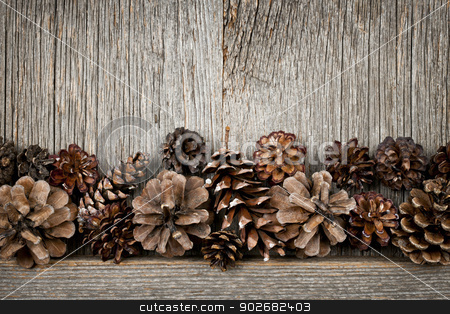 Rustic wood with pine cones stock photo, Rustic natural wooden background with pine cones by Elena Elisseeva