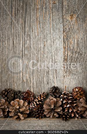 Wood background with pine cones stock photo, Rustic natural wooden background with pine cones by Elena Elisseeva