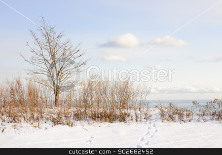 Winter shore of lake Ontario stock photo, Snowy shore of lake Ontario in Sylvan park Toronto by Elena Elisseeva