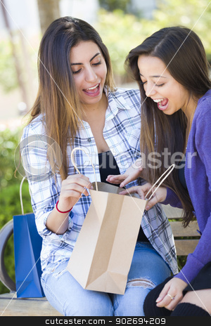 Young Adult Mixed Race Women Looking Into Their Shopping Bags stock photo, Two Young Adult Mixed Race Women Looking Into Their Shopping Bags Outside on Bench. by Andy Dean