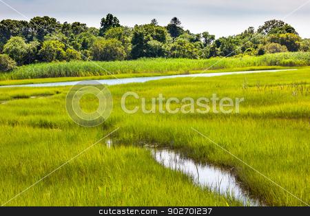 Padnaram Green Salt Water Marsh Dartmouth Massachusetts stock photo, Padnaram Green Grass Salt Water Marsh Dartmouth Masschusetts     by William Perry