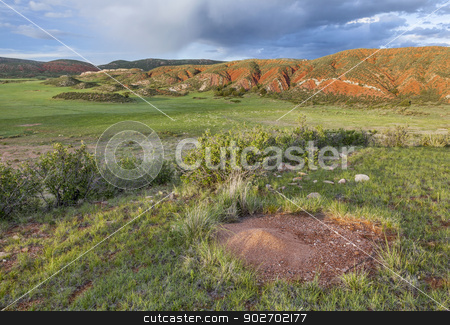 Colorado mountain ranch  stock photo, Colorado mountain ranch in early summer with ant cone nest - Red Mountain Open Space near Fort Collins by Marek Uliasz