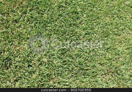 Lush green grass stock photo, Background of lush green grass on soccer pitch. by Martin Crowdy