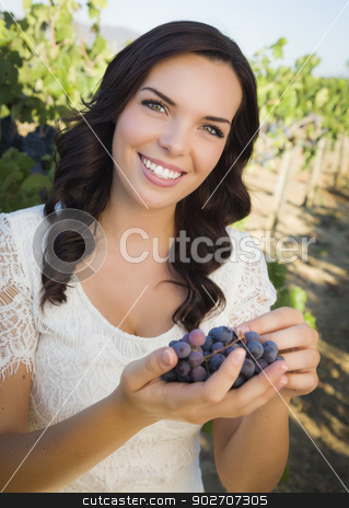 Young Adult Woman Enjoying The Wine Grapes in The Vineyard stock photo, Young Adult Mixed Race Woman Enjoying The Wine Grapes in The Vineyard Outside. by Andy Dean