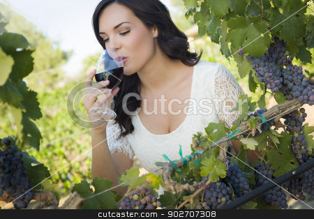 Young Adult Woman Enjoying A Glass of Wine in Vineyard stock photo, Pretty Mixed Race Young Adult Woman Enjoying A Glass of Wine in the Vineyard. by Andy Dean